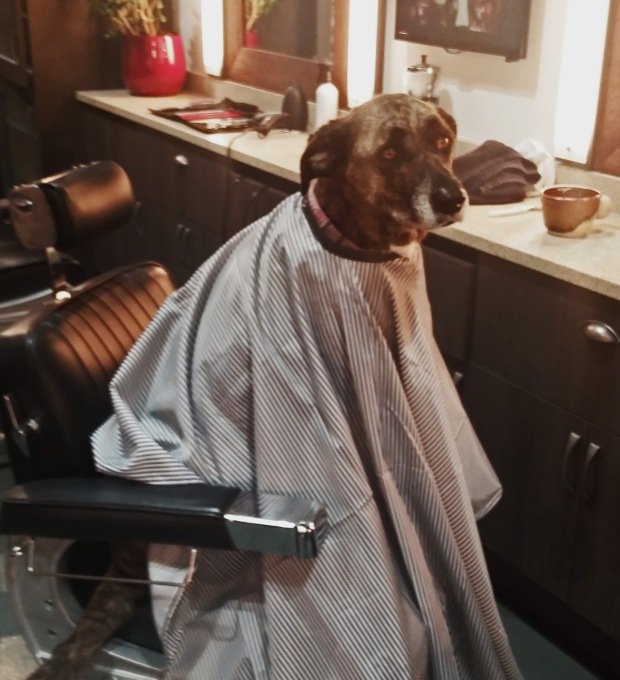knotwerk by ritchie po, mancave barbershop, sam mancave, helen siwak, ritchie po, vancouver, vancity, yvr, yaletown, SnickersHOS